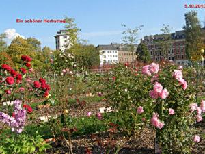 Bürgergarten 2009
