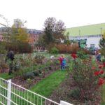 Bürgergarten 2015